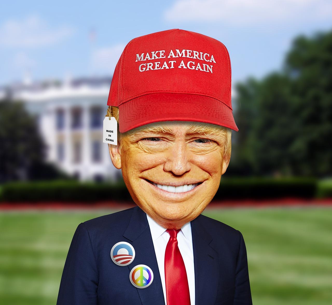 Donald Trump US Election Odds