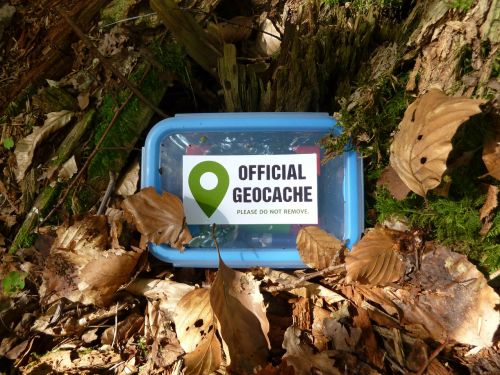 geocache,geocaching,cache,small,logbook,hiding place,search,to find,adventure,coordinates,play,box,treasure hunt,forest,leaves